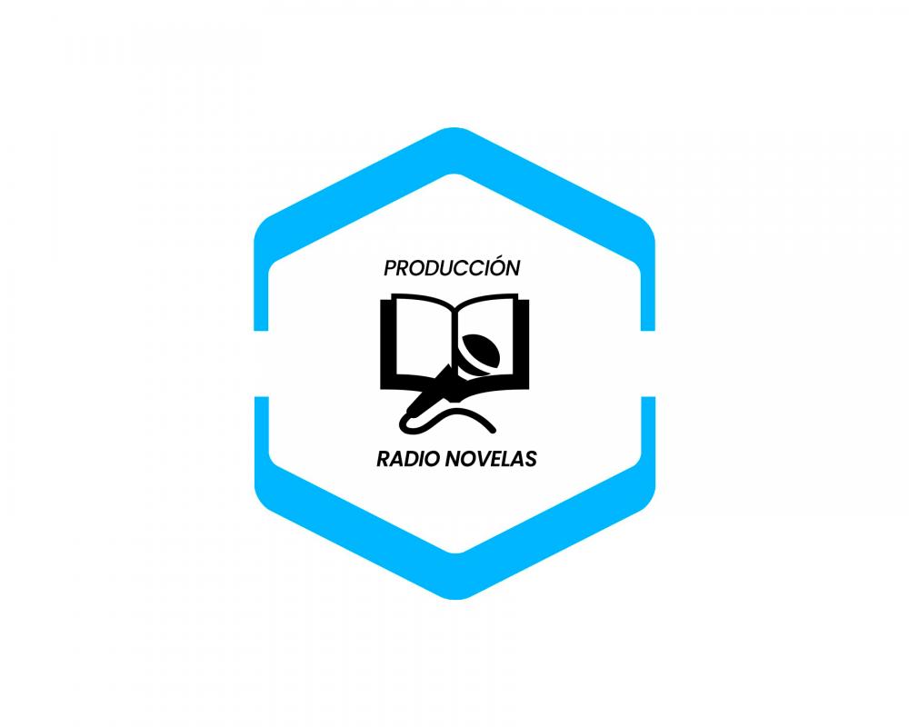Producción Radio Novelas